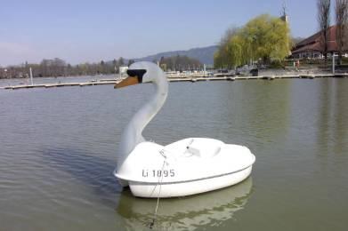 Schwanenboot